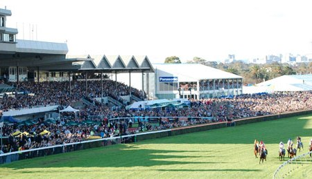 Racing at Morphettville