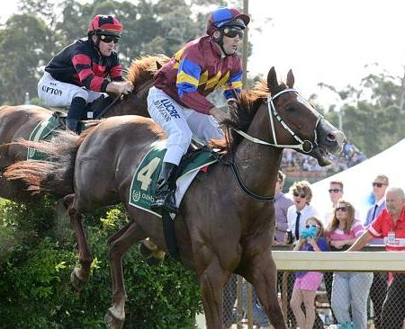 2014 Great Eastern Steeplechase at Oakbank Racing Club