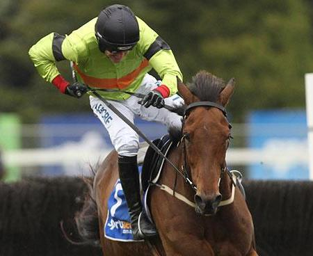 2015 Australian Grand National Steeple | South Australian Jumps Racing