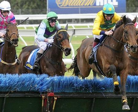 Bold Zamour wins the 2015 South Australian Grand National Hurdle