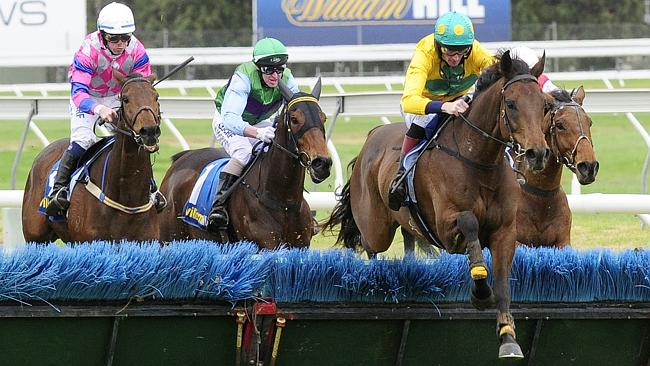 Bold Zamour Wins Klemich SA Grand National Hurdle | South Australian Jumps Racing
