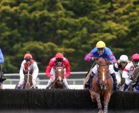 Thubiaan Wins 2015 Australian Steeple | South Australian Jumps Racing