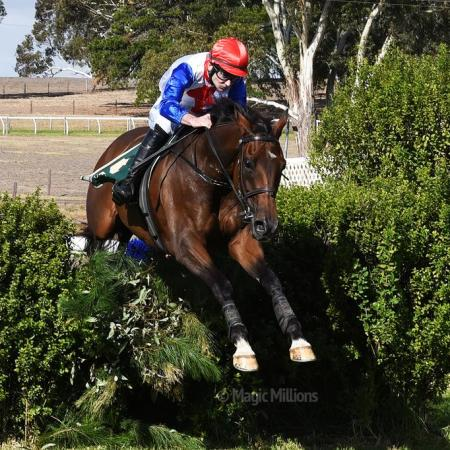 South Australian Jumps Racing | Thubiaan Wins 2015 Von Doussa Steeplechse at Oakbank