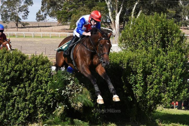 South Australian Jumps Racing | Thubiaan Wins 2015 Von Doussa Steeplechse at Oakbank
