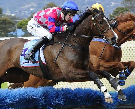 2014 Grand National Hurdle | South Australian Jumps Racing
