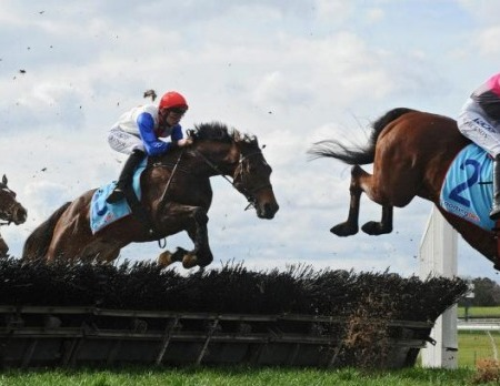 Regina Coeli | South Australian Jumps Racing