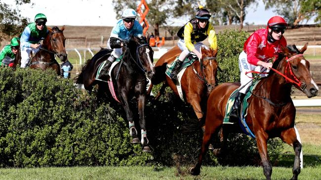 Great Eastern Steeplechase 2015 | South Australian Jumps Racing