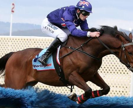 King Triton Wins Irish Hurdle at Morphettville 2014