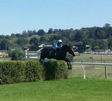 Oakbank Racing Club | Thomas Foods International Steeplechase