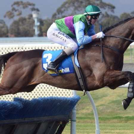 2017 SA Grand National Steeplechase Winner Angelology