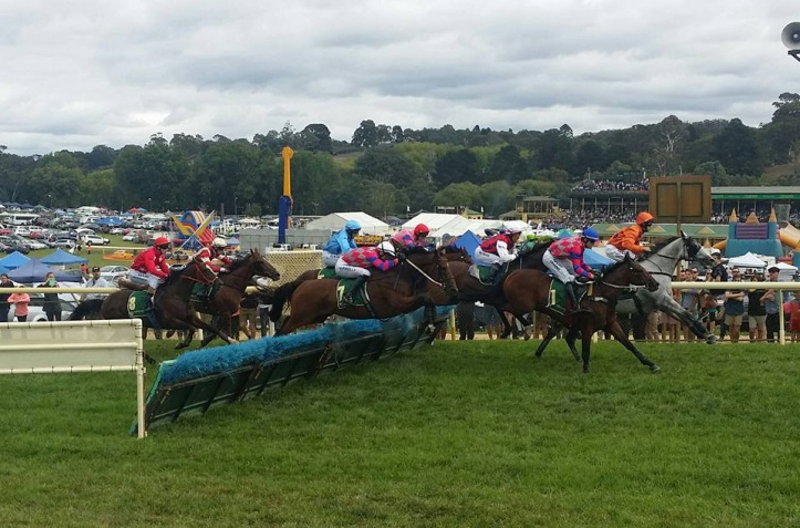 Oakbank Hurdle Racing