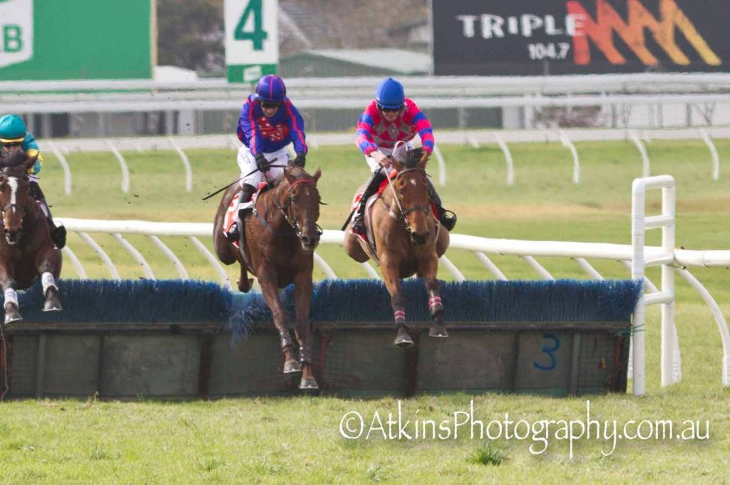 Tangara (right) ridden by Ronan Short, wins the AAMI Hurdle at Morphettville Parks on Saturday 27 July ahead of Andrea Mantegna with Tom Ryan aboard.