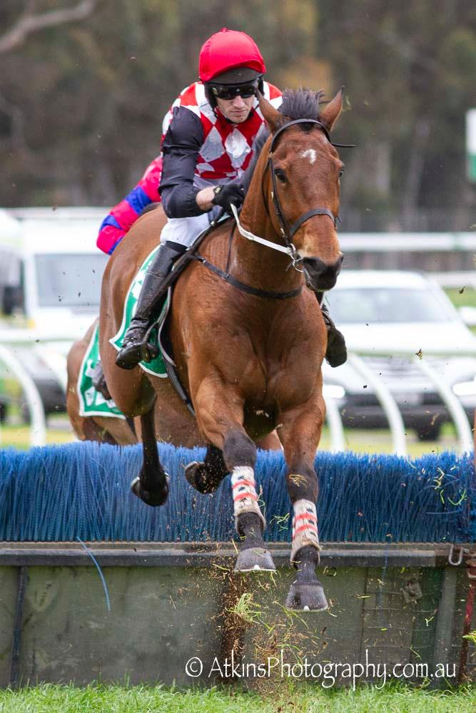 ROMELO, ridden by Lee Horner, wins the TAB BM120 Hurdle at Gawler on Wednesday 21 August.