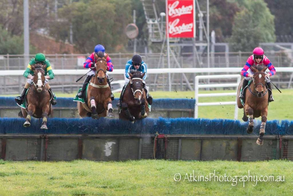 UNDERCOVER POET ridden by Will Gordon wins the TAB BM120 Hurdle at Gawler on Wednesday 7 August